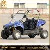 Volwassen Goedkope Met gas van het Go-kart 110cc gaat Karts 110cc 150cc 200cc 250cc 300cc
