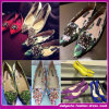 2015の新式の卸し売りデザインイブニング・ドレスの靴/党靴(C-126)