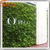 Fabrik-direkte künstliche landschaftlich verschönernde Grünpflanze-Gras-Wand