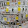 إيبوكسي يصمّم 5050 [لد] شريط