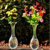 La mano de flores en florero de vidrio soplado transparente/Jarrón de cristal