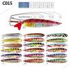 La vie colorée aiment la cuiller de pêche