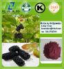 Alta calidad Movus antocianidinas Alba del extracto del L. de la naturaleza de la fuente del fabricante/de la mora el 5%, el 10%, el 20%