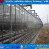 Estufa plástica do arco do fabricante grande da estufa em China