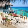 木のレストランの家具は多彩な孔雀の椅子(SP-CT693)とセットした