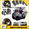 トラック/フォークリフトのためのWeichai Wd615.34のディーゼル機関のアッセンブリか予備品/元の部品