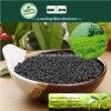 Il carbonio di Kingeta ha basato il fertilizzante composto NPK 15-15-15 per tè