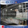 Cage chaude de poulet de modèle de cloche de volaille de grilleur de vente