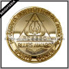 School Sport Council (BYH-10564)のための金Commemorative Coin