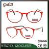 Tr90 het Optische Frame van uitstekende kwaliteit T1029 van het Oogglas van Eyewear