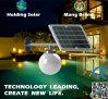 IP65 de monocristal de luz LED panel solar para jardín