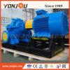 Pompa ad acqua centrifuga singola/doppia fase di alto flusso