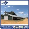 Camera prefabbricata/prefabbricata Filippine del pollo d'acciaio curvo moderno commerciale della costruzione dell'azienda agricola