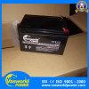 AGM Batterij van het Lood van de Opslag van de Krachtcentrale 12V12ah van de Batterij van het Lood de Zure Op Verkoop