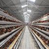 Boa qualidade de Uganda avícola da gaiola de galinha da camada de frango Automática
