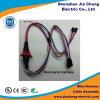 De Fabrikant van de Assemblage van de Kabel van de Uitrusting van de draad voor Allerlei Toepassing