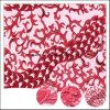 Generi differenti di poli tessuto bianco alla moda di Tulle del merletto