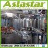 세륨 표준 자동적인 과일 주스 펄프 채우는 생산 라인 5000bph-6000bph