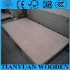 maderas contrachapadas de los muebles 1220 * de 2440 * de 12m m Okoume