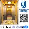 La trazione Gearless Vvvf guida a casa l'elevatore della villa (RLS-235)