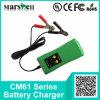 Verschillende Huidige 6V/12V Output handhaaft de Lader van de Batterij