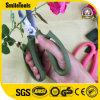 La lamierina tagliente Floristry Scissors le forbici di taglio del fiore con la maniglia di Comforbale