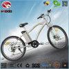 Neuer MITTLERER Gummireifen-Fahrrad-Gebirgselektrischer Roller des Bafang Bewegungsfahrrad-350W fetter mit voller Aufhebung