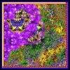 Красивейший шарф напечатанный цифров Silk (F13-0075)