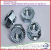 Plaqué zinc meilleure vente de l'écrou à embase hexagonale en acier au carbone DIN6923