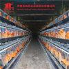 Vendita calda 2016! Il pollame delle strumentazioni delle aziende agricole di pollo mette a strati la gabbia del pollo