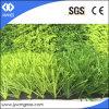 60mm/S Shape/12000d//Football Grass 또는 Soccer Grass