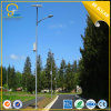 50W off-Grid Solar Street LED Light in Kenia