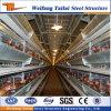 Het Ontwerp van China en het Chinese Standaard Geprefabriceerde Gevogelte van de Structuur van het Staal Materiaal