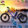 알루미늄 합금 뚱뚱한 타이어 두 배 후방 디스크 Barke 전기 자전거