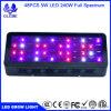 El LED crece la bombilla, Lampat crece la luz de la planta para el invernadero 240W orgánico 3-Band de Hydropoics