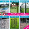 Os produtos de ferro ou aço paliçada porta paralela de Design da Barragem
