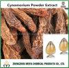 Het wilde Uittreksel van het Poeder van Songaria Cynomorium van het Kruid met 10:1, 20:1
