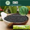 Il carbonio di Kingeta ha basato il fertilizzante composto NPK 18-18-6 per il raccolto