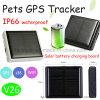 Animal/traqueur imperméables à l'eau V26 des animaux familiers Solaire-Actionnés par IP67 GPS
