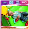 Children Indoor Playgroundのための大きいDiscount