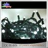 옥외 LED 훈장 휴일 온난한 백색 PVC 철사 끈 빛