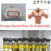 Augmenter la testostérone Undecanoate d'Unde d'essai de poudre de stéroïdes anaboliques de muscle