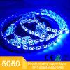 5050 kit della striscia di bassa tensione LED con Controler a distanza