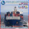 캐나다에 출하 Forwarder Sea Freight Rates 중국