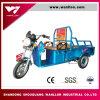 triciclo elétrico da carga de 48V 800W para o riquexó do automóvel do adulto/carga