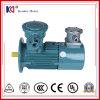 Motor elétrico da indução da conversão de freqüência com regulamento da velocidade
