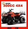 Nuevo 300cc 4X4 Adult Quad Bike (MC-371)