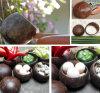야자열매 쉘 상자 저장 사발
