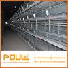 Type cage de 4 rangées H de couche de poulet