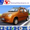 5 Elektrische voertuig het met 4 wielen van de passagier